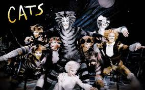 cats on broadway cats on broadway instagram picture and galleries