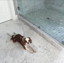 zenith white carrara hexagon honed marble tile tilebar