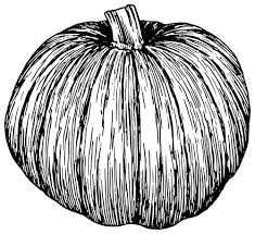 Pumpkin clipart black and white silhouette