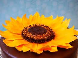 Zuckerblumen Selber Spritzen Anleitung Was Sonnenblume Aus Blütenpaste Blütenpaste Sonnenblumen