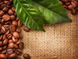 Coffee Border Design Beans And Leaves Stock Photo