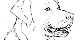 Panther Paw Coloring Page Animal Pattern