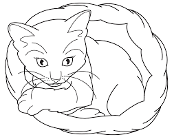 Kittens Coloring Pages Printable Sheet Anbu