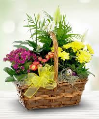 Spirit Halloween Sarasota Hours by Summertime Picnic Garden Basket Summertime Is Here Sarasota