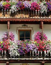 Spectacular Balcony Garden Woohome 11