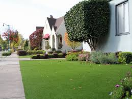 Carpet Grass Florida by Fake Grass Carpet Rose City Texas Landscape Rock Front Yard Design