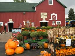 Central Wisconsin Pumpkin Patches by Pumpkin Patches Corn Mazes Fall Festivals In The Plainfield Area