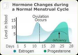 Uterus Lining Shedding Period by Causes Of Irregular Periods 34 Menopause Symptoms Com