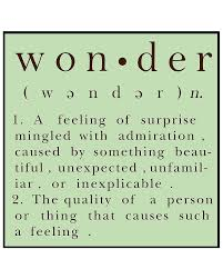 53 best orphic words for the creative wilds images on pinterest
