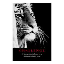 Black Amp White Tiger Motivational Challenge Poster