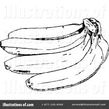 Royalty Free RF Banana Clipart Illustration by Prawny