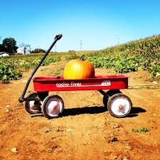 Pumpkin Patch Maryland by 15 October Festivities In Maryland
