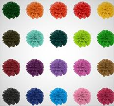 Tissue Pom Poms Paper Flowers Balls Set Of 20 Colorful Big Embellishments Decoration