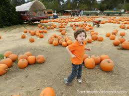 Pumpkin Patch Sacramento Groupon by Briar Patch Restaurant Inc Coupons 588 Marietta Highway