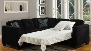 Sears Twin Sleeper Sofa by Admirable Art Sofa Ebay Berlin Winsome Sofa Set Leather Dramatic