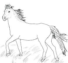 Horse Jumping Coloring Pages And Rider Realistic