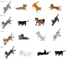 warrior cat names warrior cat name that cat by cometstre on deviantart