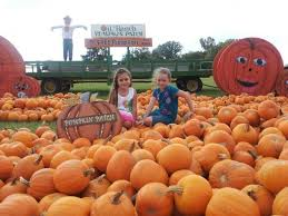 The Colony Tx Pumpkin Patch by The Best Pumpkin Patches Around La Chelsea Robinson Real Estate