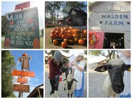 Pumpkin Patch Near Nolensville Tn by Walden Farm Pumpkin Patch Family Friendly Review Family