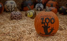 Pumpkin Patch Nashville Area by Nashville Zoo At Grassmere Nashville Tn