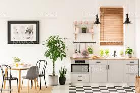 echtes foto hellen küche interieur mit schachbrettboden pastell rosa zubehör frischpflanzen und esstisch auf teppich stockfoto und mehr bilder