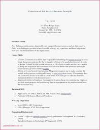 Resume Sample For Fresh Graduate Accounting Pdf As 30 Luxury Professional Profile Example