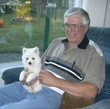 american eskimo dog breed information and photos miniature