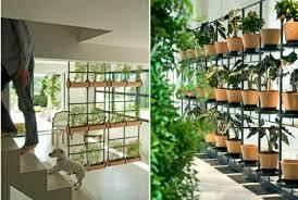 20 ideen für hängende blumentöpfe mit zimmerpflanzen