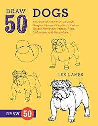 Draw 50 Dogs The Step By Way To Beagles German