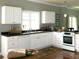 White Kitchen Cabinets With Appliances To Buy Sinks Off