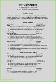 Awesome Resume Examples Customer Service Summary For Unique Beautiful