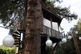 100 Tree House Studio Wood SFs Jay Nelson Builds Tree Houses As Works Of Art SFGate