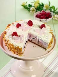 joghurt heidelbeer torte kuchen backen rezeptfoto