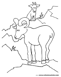 Coloring Page Goat Animals 63