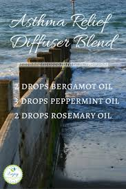 Fresh Drop Bathroom Odor Preventor Ingredients by Best 25 Asthma Ideas On Pinterest What Is Asthma Air Cleaning