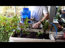 Smart Automated Garden Watering System Prototype - YouTube Sprinkler Systems Diy Good Home Design Gallery And The 25 Best Irrigation Ideas On Pinterest Irrigation System 2013 Veg Box Youtube Drip Basics Make Choosing An System Hgtv Self Watering Square Foot Garden Diy How To An At Golf Course Wedotanks And Tom Farley Land Best Designing A Basic Pvc For Peenmediacom Info Source Big Freeze 5 Things To Think About Before