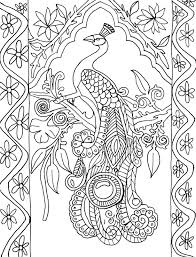 Coloring Page World Peacock Portrait