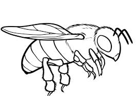 Coloring Page With Pictures In Gallery Bee