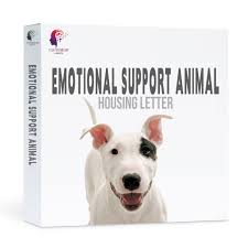 Its Emotional Support Animal Letter Emotional Support Animal