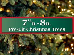 75 8 Ft Pre Lit Artificial Christmas Trees