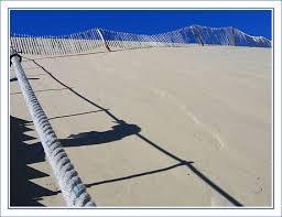 la dune du pilat du côté du teich