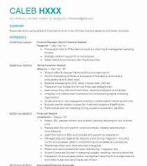 Resume Of Financial Analyst Summary For Senior