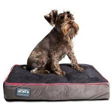 Top Rated Orthopedic Dog Beds by Best Orthopedic Dog Bed My Happy Pooch