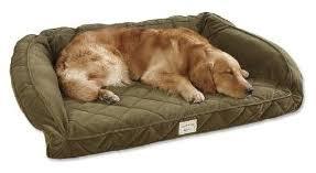 3 tempur pedic dog bed reviews petful