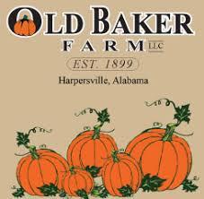 Pumpkin Patch Alabama Clanton by Old Baker Farm Harpersville Alabama