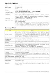 Professional Summary Resume Examples For Software Developer Format 1 Year Experienced