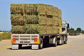 Best Quality Hay & Straw, Storage & Transport Advantages Hay Truck Stock Photos Images Alamy My 63 Chevy Hauling Hay Trucks Hay Hauler Loading Time Lapse Youtube Gmc Diesel Dairyland Co 24 Truck And Trailer In Flickr Australian Trucking On Twitter The Volvotrucks Ata Safety 5jp Ranch Life Page 6 Delivering To Market At Tenerir The Atlas Mountains Pinterest Overloaded In West Coast Of Turkey Image Farm With Family Help Men Riding Full