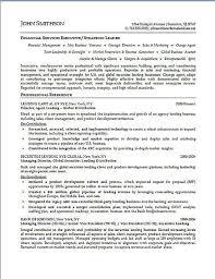Senior Vice President Of Sales Resume