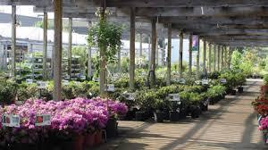 Tallmadge Petitti Garden Center