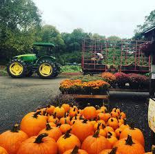Lane Farms Pumpkin Patch by Langwater Farm